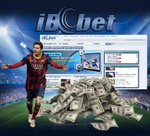 ibcbet_money